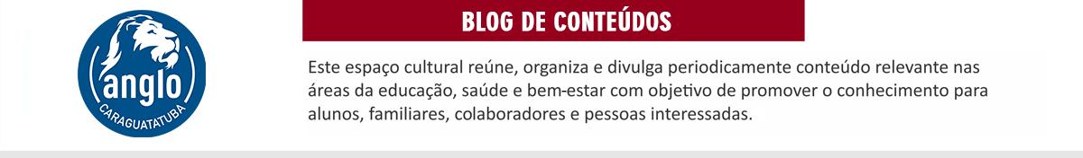 Blog Anglo Módulo